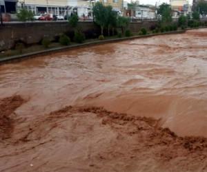 سیلاب و کولاک