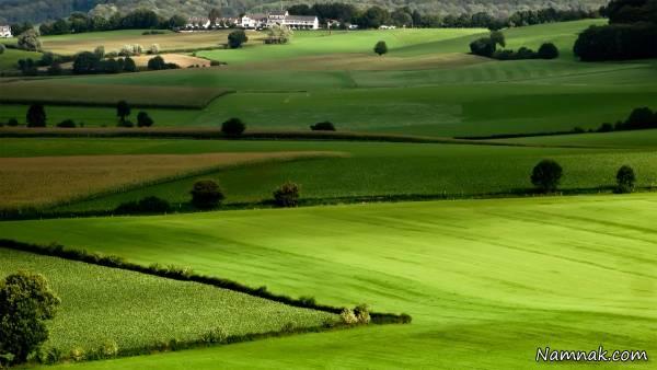 کشاورزی در رشت