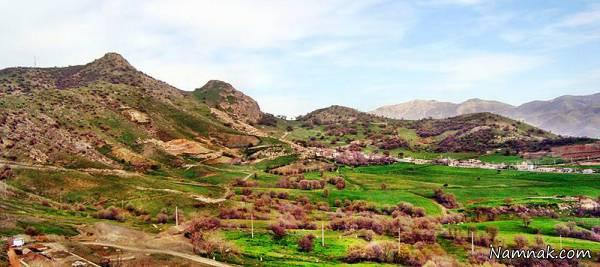 کوه برقلا