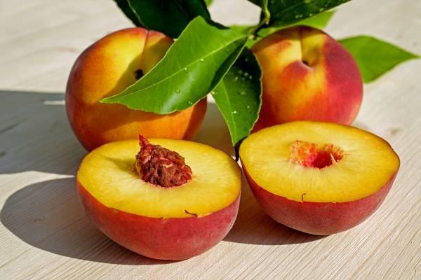 میوه اسید فولیک
