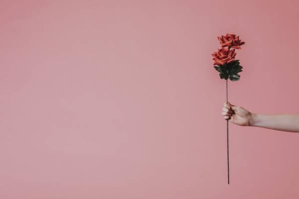 دادن گل به همسر