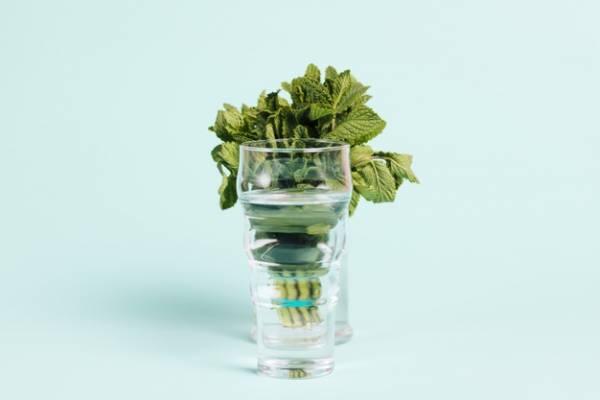 عرقیات گیاهی مفید و مضر در دوران بارداری