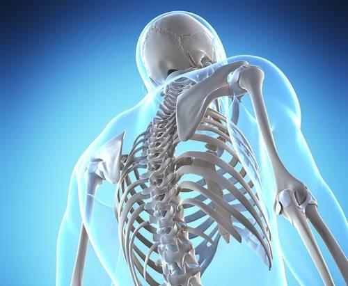سلامت استخوان