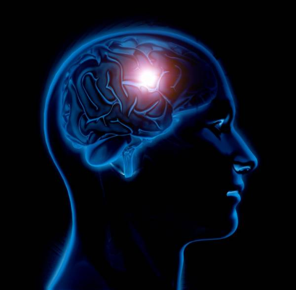 تقویت عملکرد مغز