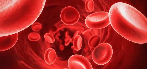 کم خونی چیست