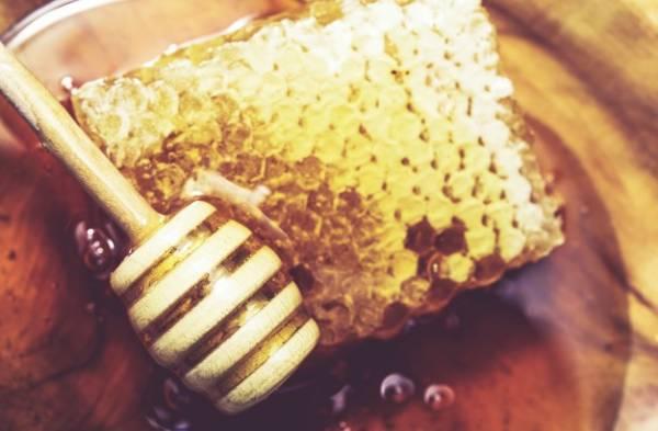 عسل برای کم خونی