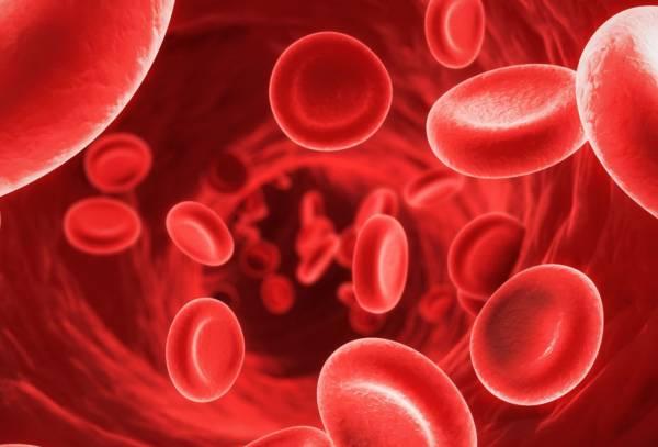 جلوگیری از کم خونی
