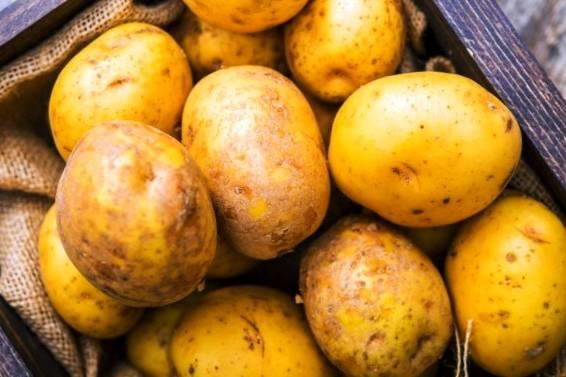 بهبود هضم با سیب زمینی