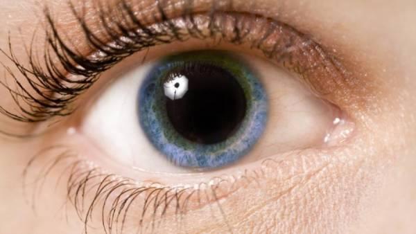 زالزالک برای تقویت بینایی