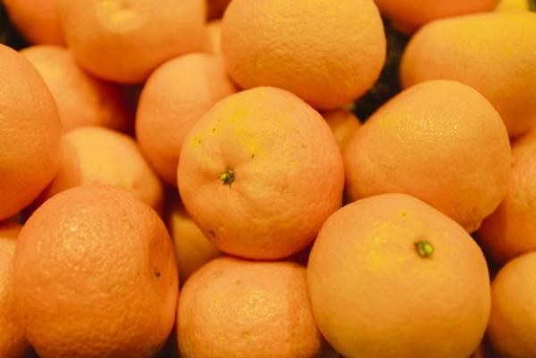 نارنگی برای تقویت سیستم ایمنی