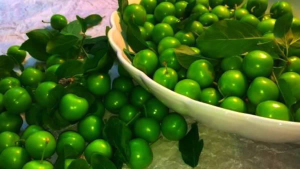 مصرف گوجه سبز