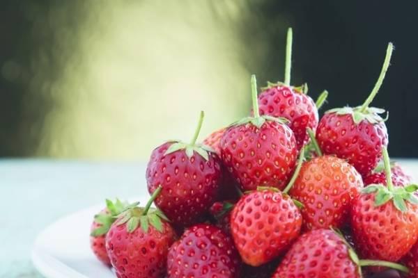 خوردن توت فرنگی در بارداری