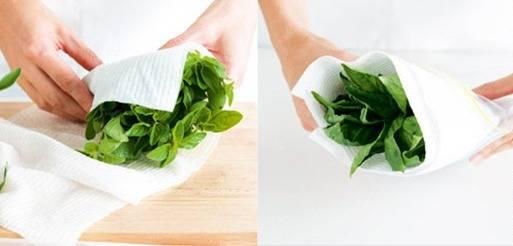 طریقه نگهداری سبزی خوردن