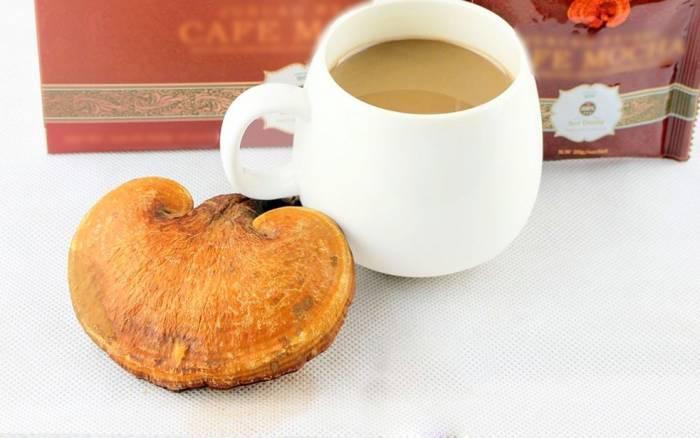 مضرات قهوه گانودرما