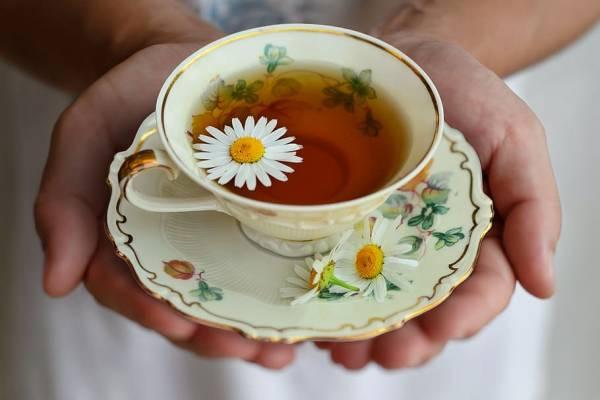 مزایای چای بابونه