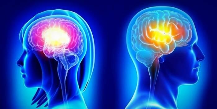 مغز زنان و مردان