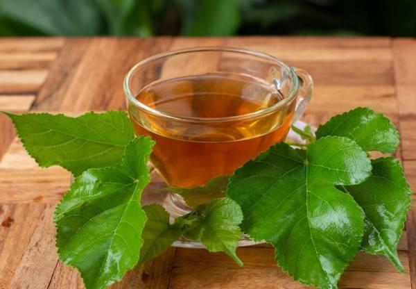 چای برگ توت