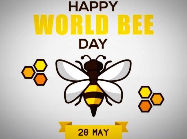 پیام تبریک روز زنبور
