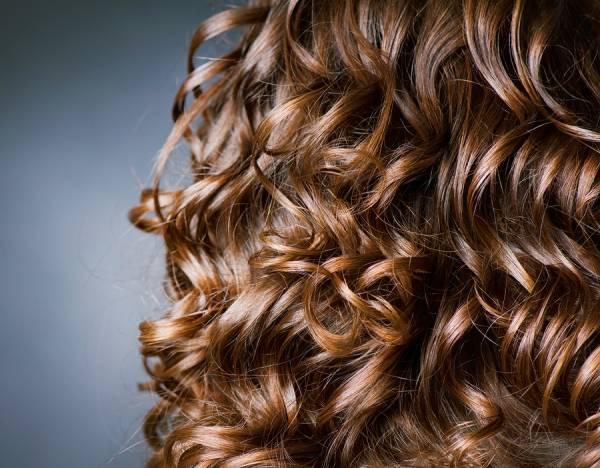 فر درشت موی کوتاه