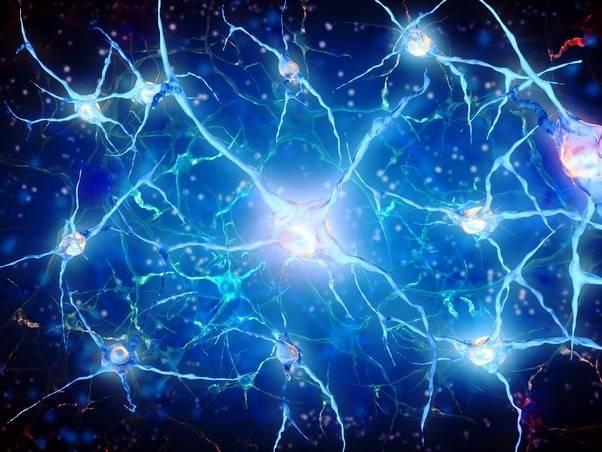 سرعت نورون ها