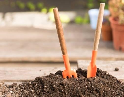 ساخت کود گیاهی در منزل