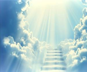 انسان چگونه به خدا نزدیک می شود و می تواند اشتباهات خود را پاک کند