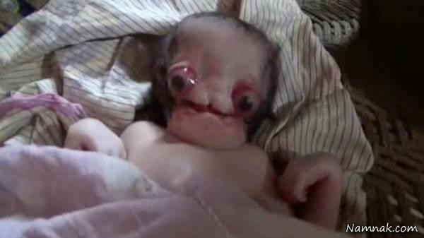 نوزاد ترسناک