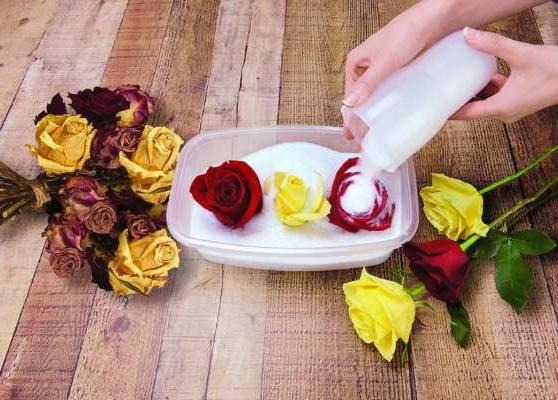 خشک کردن گل با سیلیکاژل