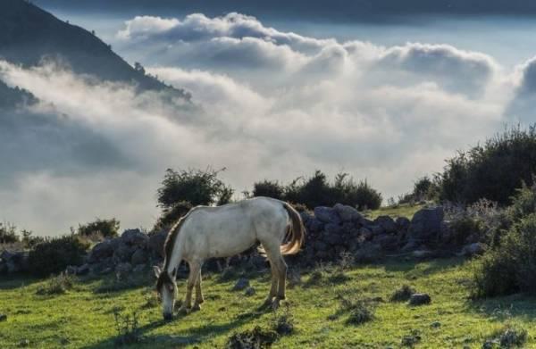 فیلبند زندگی روی ابرها