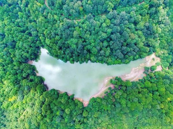 عکس هوایی از دریاچه چورت
