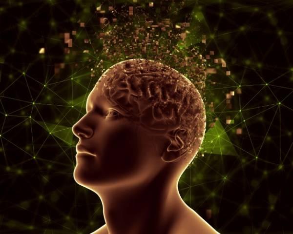 تنظیم عملکرد مغز