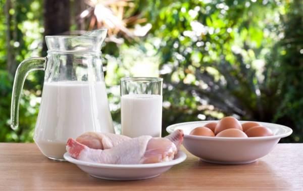 شیر، مرغ و تخم مرغ