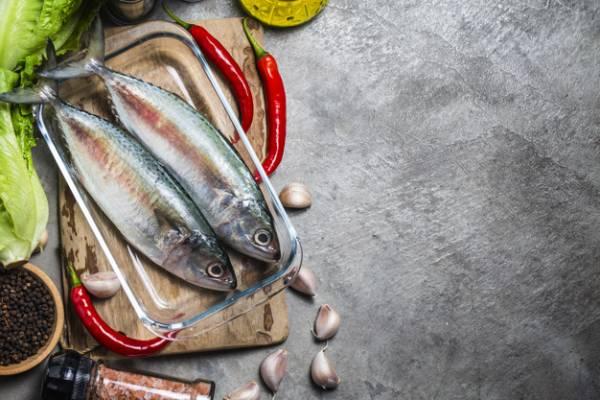 نکات مهم در خرید ماهی