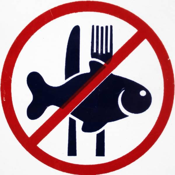 نخوردن ماهی