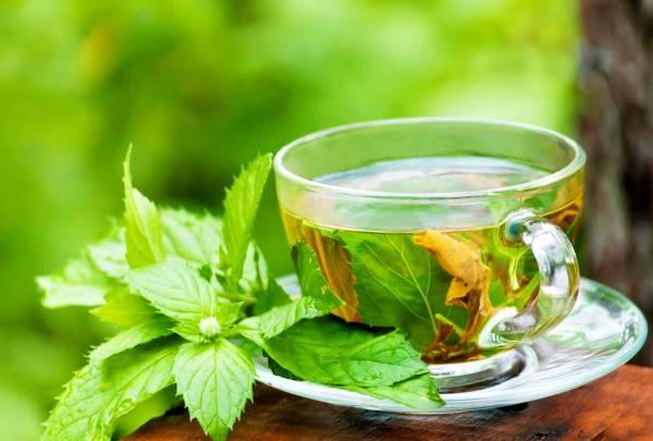 مزایای چای پونه
