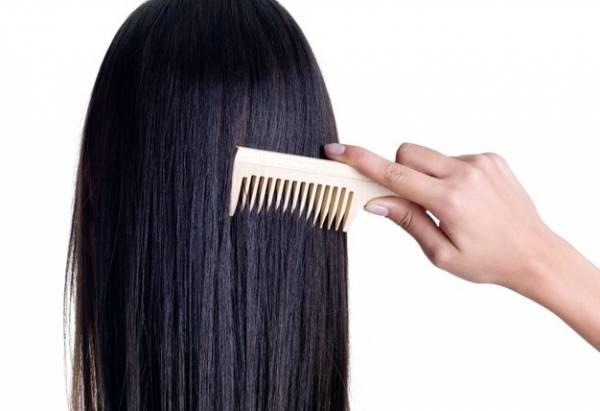 تیغ کاکتوس روی مو