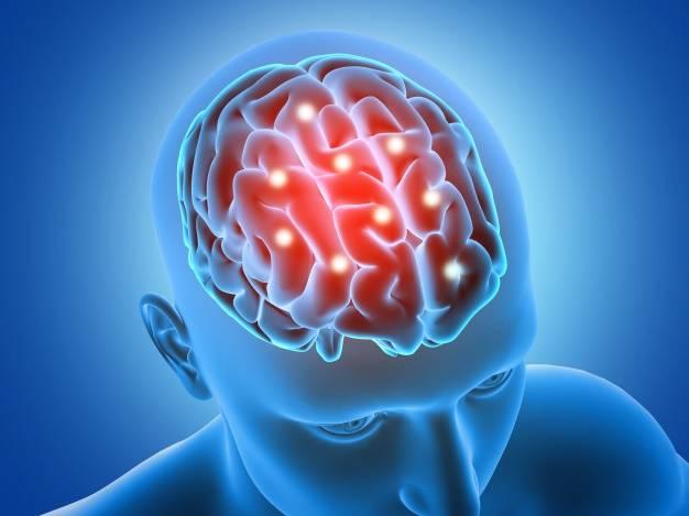 تاثیر فصل روی مغز