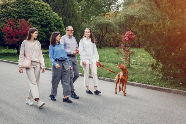 پیاده روی رژیم لاغری